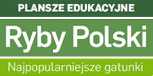 banner ryby polski
