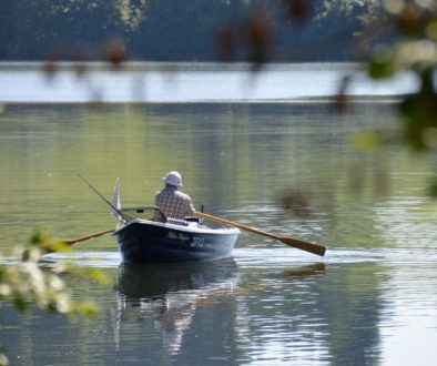 rowing-boat-1506341_1920