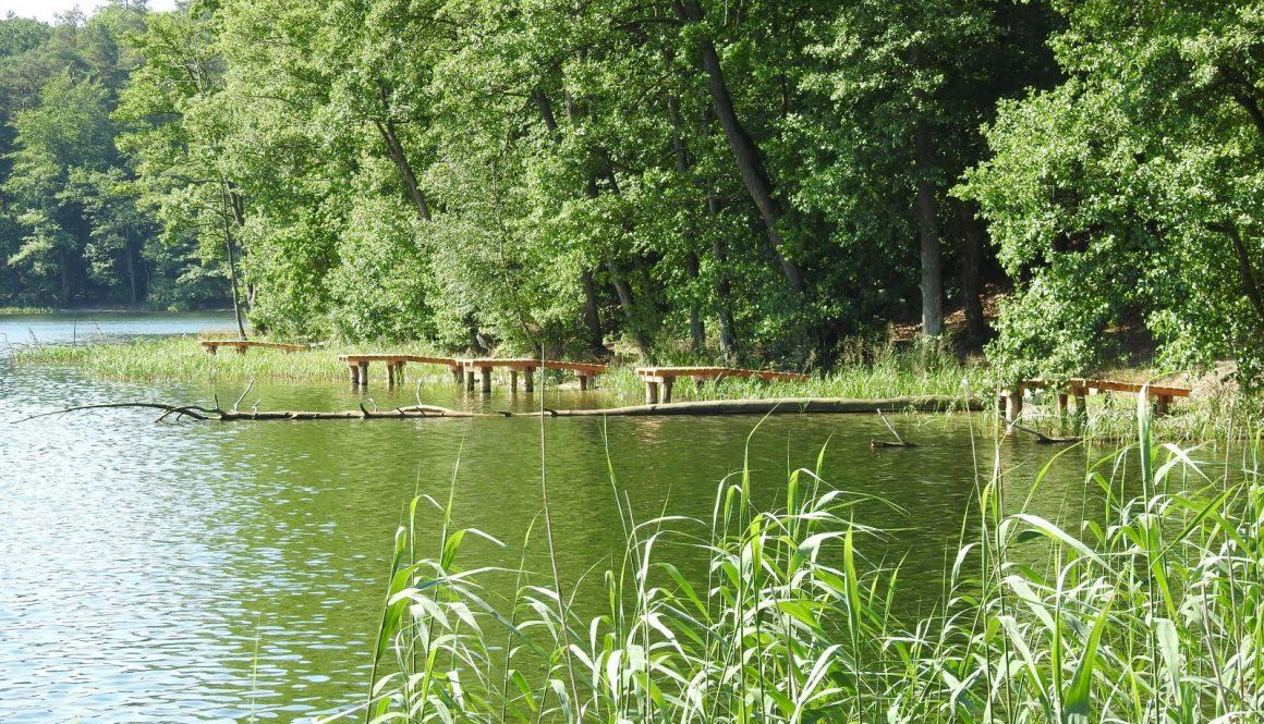 jezioro Stara Dobrzyca